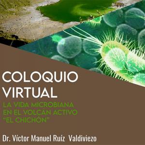 """La vida microbiana en el volcán activo """"el Chichón"""""""