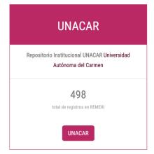 RUNACAR + REMERI = difusión, visibilidad y acceso abierto a través de una interfaz común, de agregadores y redes internacionales.