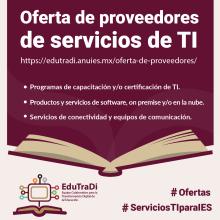 Conoce la Oferta de Servicios de Proveedores de TI