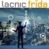 FRIDA: financiamiento para fortalecer Internet en América Latina y el Caribe